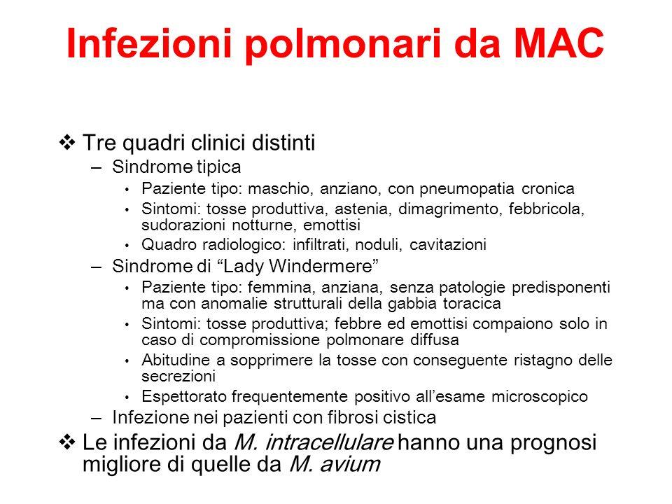 Infezioni polmonari da MAC Tre quadri clinici distinti – Sindrome tipica Paziente tipo: maschio, anziano, con pneumopatia cronica Sintomi: tosse produ