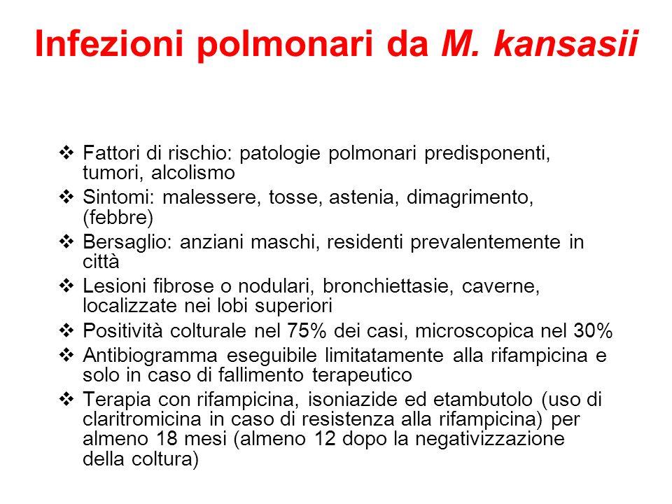 Infezioni polmonari da M. kansasii Fattori di rischio: patologie polmonari predisponenti, tumori, alcolismo Sintomi: malessere, tosse, astenia, dimagr