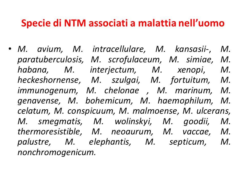 Specie di NTM associati a malattia nelluomo M. avium, M. intracellulare, M. kansasii-, M. paratuberculosis, M. scrofulaceum, M. simiae, M. habana, M.