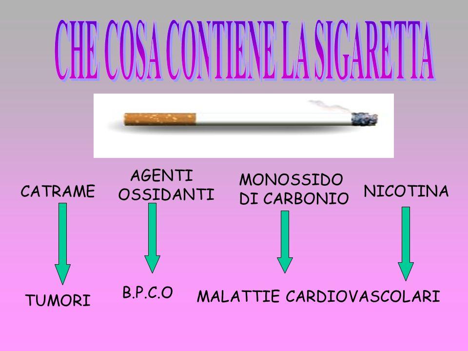 Che Cosa contiene la sigaretta La dipendenza da nicotina I danni del fumo Dati statistici sul fumo I giovani fumatori Fumo story Donne e fumo Le leggi