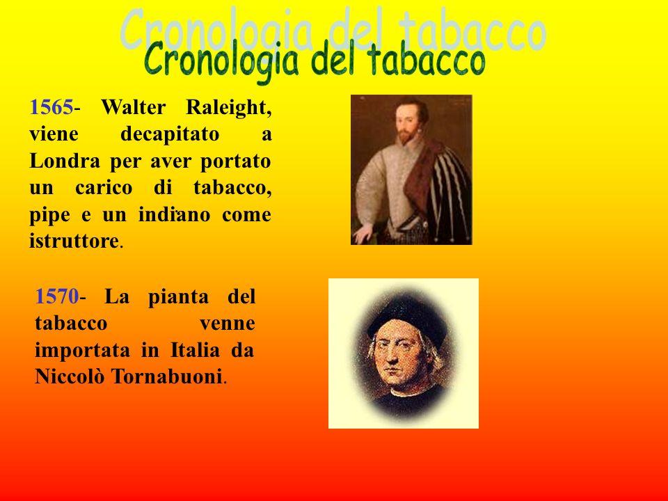 Sembra che a portare il tabacco in Europa fosse il frate Romano Pace; lambasciatore portoghese Jean Nicot fece omaggio a Caterina de Medici non solo d