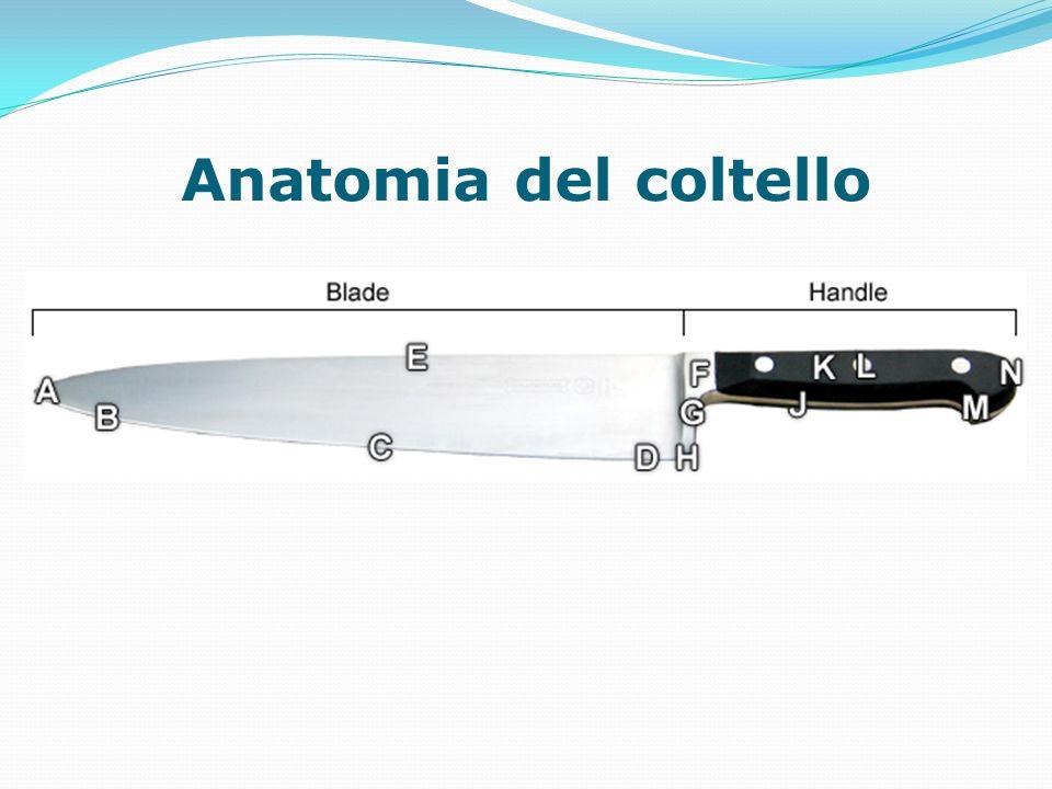 Anatomia del coltello