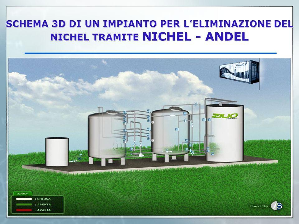 SCHEMA 3D DI UN IMPIANTO PER LELIMINAZIONE DEL NICHEL TRAMITE NICHEL - ANDEL