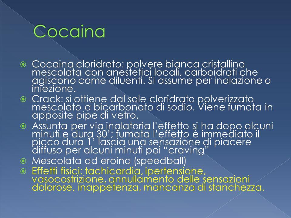 Cocaina cloridrato: polvere bianca cristallina mescolata con anestetici locali, carboidrati che agiscono come diluenti. Si assume per inalazione o ini