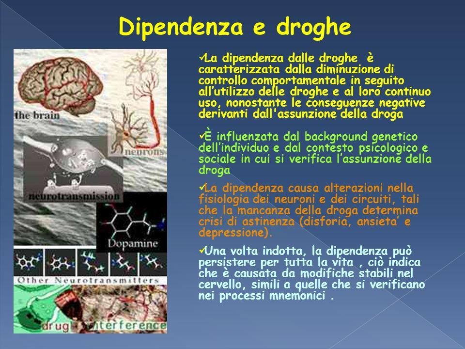 Dipendenza e droghe La dipendenza dalle droghe è caratterizzata dalla diminuzione di controllo comportamentale in seguito allutilizzo delle droghe e a