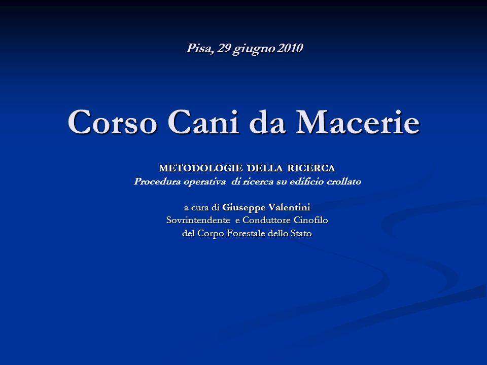 Pisa, 29 giugno 2010 Corso Cani da Macerie METODOLOGIE DELLA RICERCA Procedura operativa di ricerca su edificio crollato a cura di Giuseppe Valentini