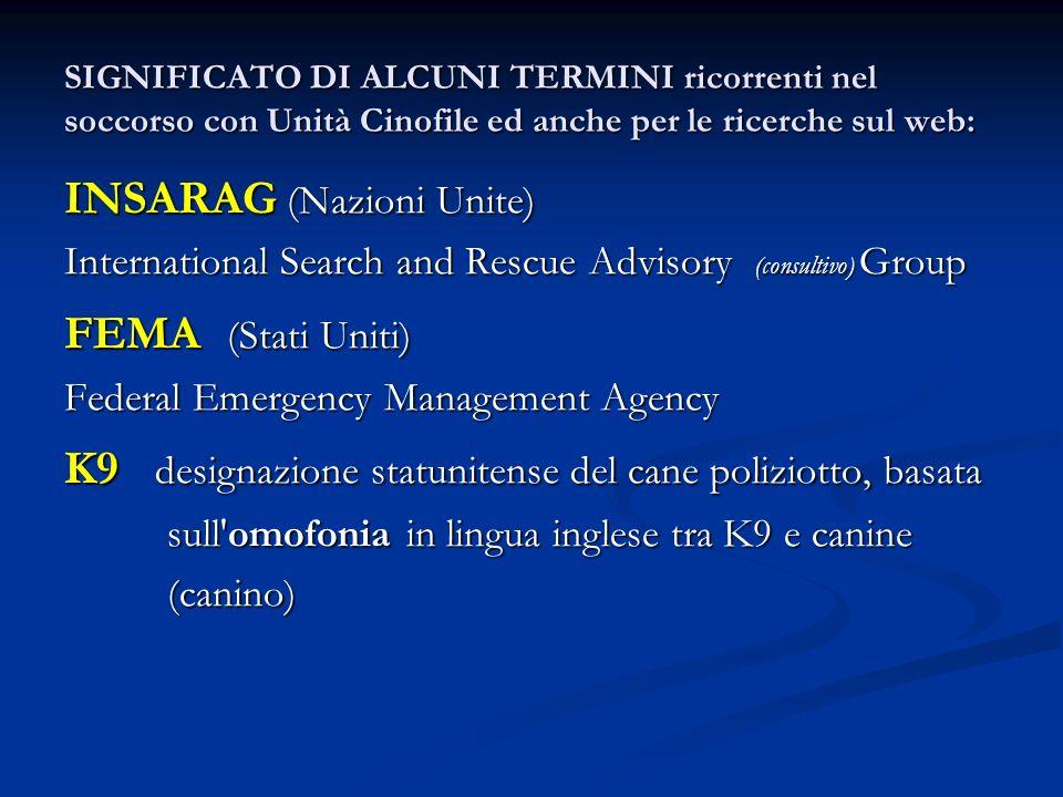 SIGNIFICATO DI ALCUNI TERMINI ricorrenti nel soccorso con Unità Cinofile ed anche per le ricerche sul web: INSARAG (Nazioni Unite) International Searc