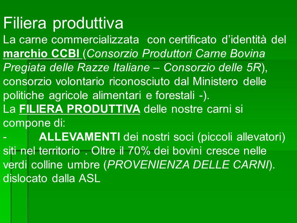 Filiera produttiva La carne commercializzata con certificato didentità del marchio CCBI (Consorzio Produttori Carne Bovina Pregiata delle Razze Italia