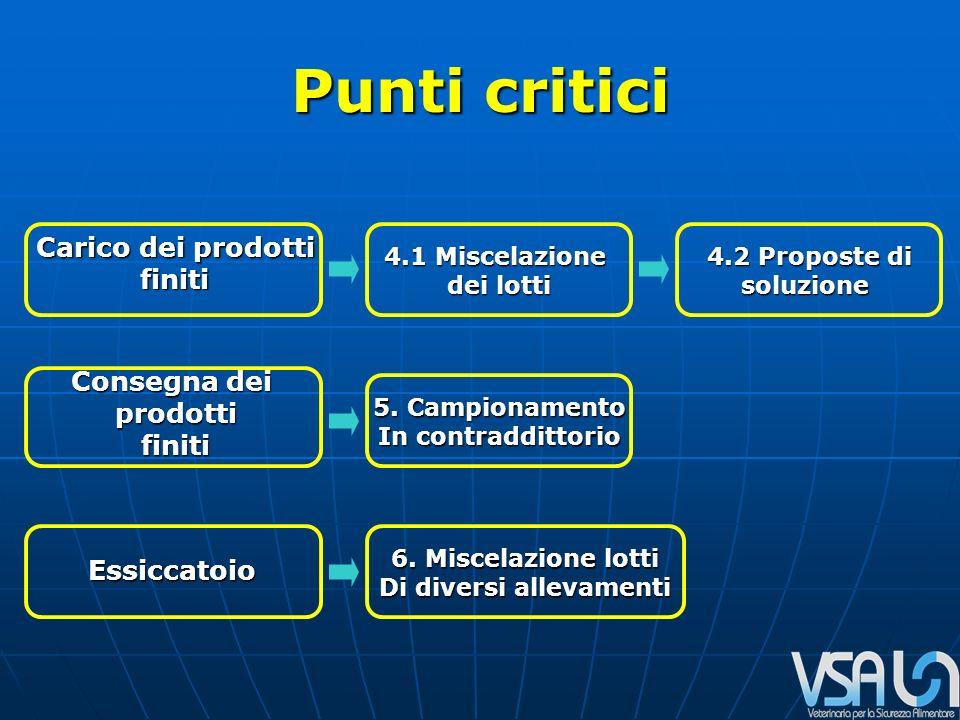 Punti critici Essiccatoio Carico dei prodotti finiti Consegna dei prodottifiniti 4.1 Miscelazione dei lotti 4.2 Proposte di soluzione 5.