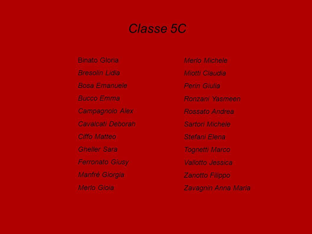 Classe 5C Binato Gloria Bresolin Lidia Bosa Emanuele Bucco Emma Campagnolo Alex Cavalcati Deborah Ciffo Matteo Gheller Sara Ferronato Giusy Manfrè Gio