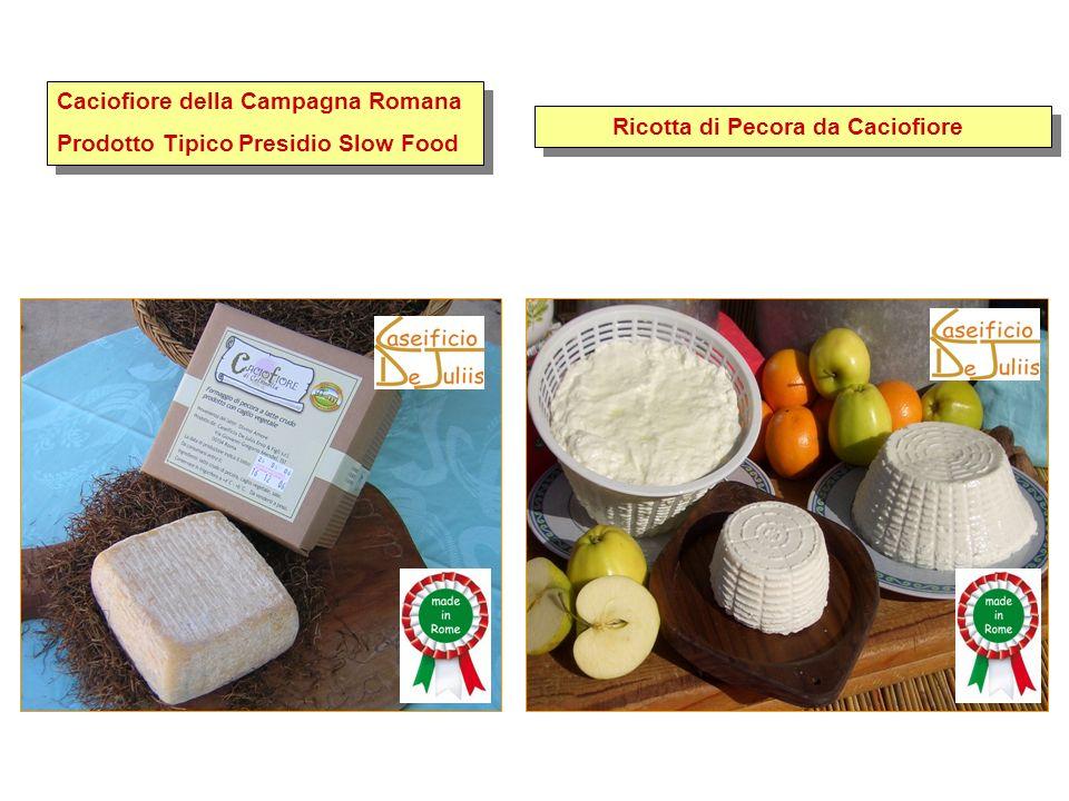 Caciofiore della Campagna Romana Prodotto Tipico Presidio Slow Food Caciofiore della Campagna Romana Prodotto Tipico Presidio Slow Food Ricotta di Pec
