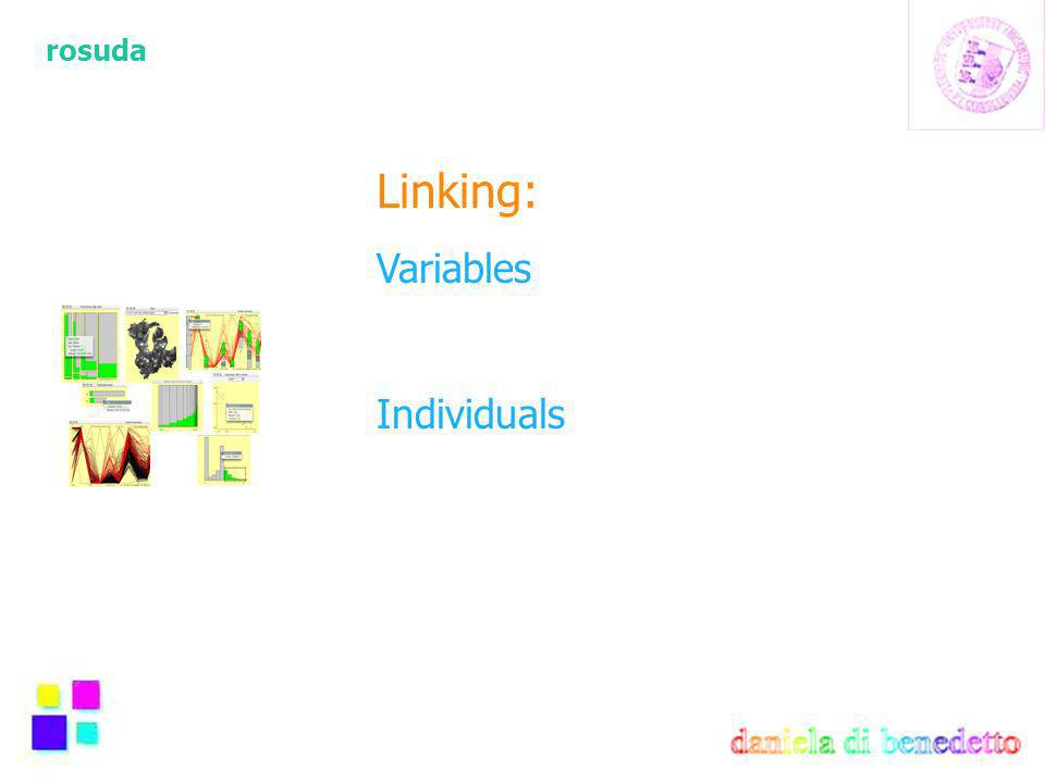 rosuda Linking: Variables Individuals