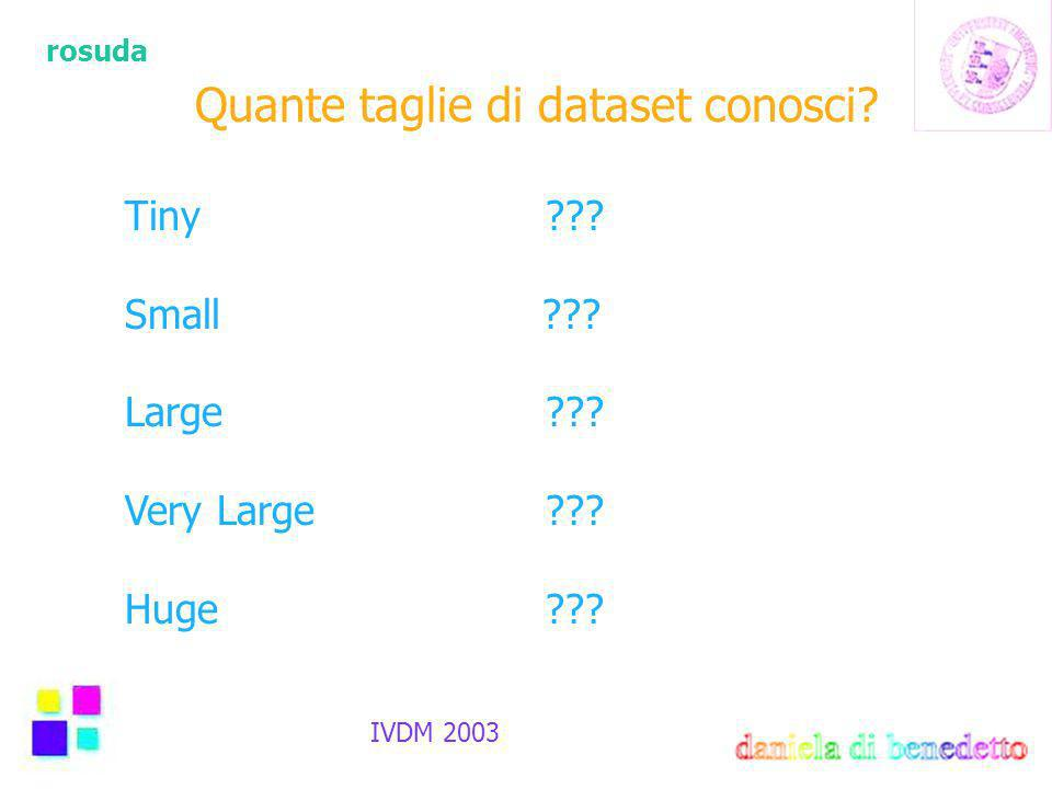 rosuda IVDM 2003 Quante taglie di dataset conosci? Tiny??? Small ??? Large??? Very Large??? Huge???