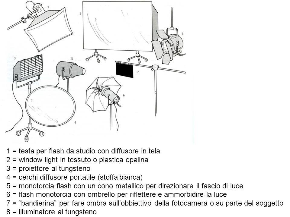 1 = binari con flash monotorcia e generatori A = giraffa con testa a luce morbida B = lampada alogena al tungsteno C = flood al tungsteno con ombrello (morbida) D = lampada con pannello riflettente E = piccolo flood al tungsteno con pinza (facilmente trasportabile) 1
