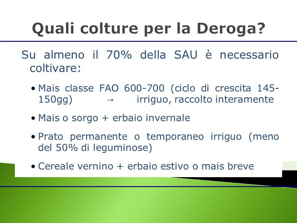 Su almeno il 70% della SAU è necessario coltivare: Mais classe FAO 600-700 (ciclo di crescita 145- 150gg) irriguo, raccolto interamente Mais o sorgo +