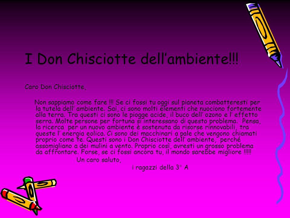 I Don Chisciotte dellambiente!!! Caro Don Chisciotte, Non sappiamo come fare !!! Se ci fossi tu oggi sul pianeta combatteresti per la tutela dell ambi