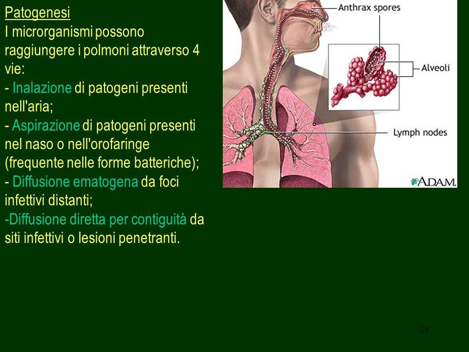 26 Patogenesi I microrganismi possono raggiungere i polmoni attraverso 4 vie: - Inalazione di patogeni presenti nell aria; - Aspirazione di patogeni presenti nel naso o nell orofaringe (frequente nelle forme batteriche); - Diffusione ematogena da foci infettivi distanti; -Diffusione diretta per contiguità da siti infettivi o lesioni penetranti.