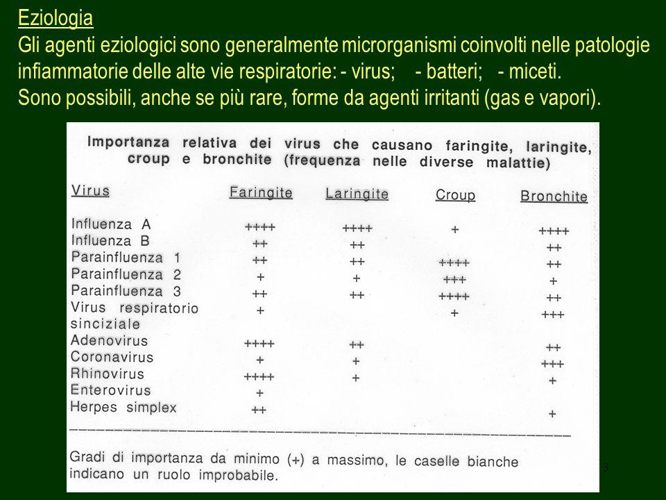 3 Eziologia Gli agenti eziologici sono generalmente microrganismi coinvolti nelle patologie infiammatorie delle alte vie respiratorie: - virus; - batt