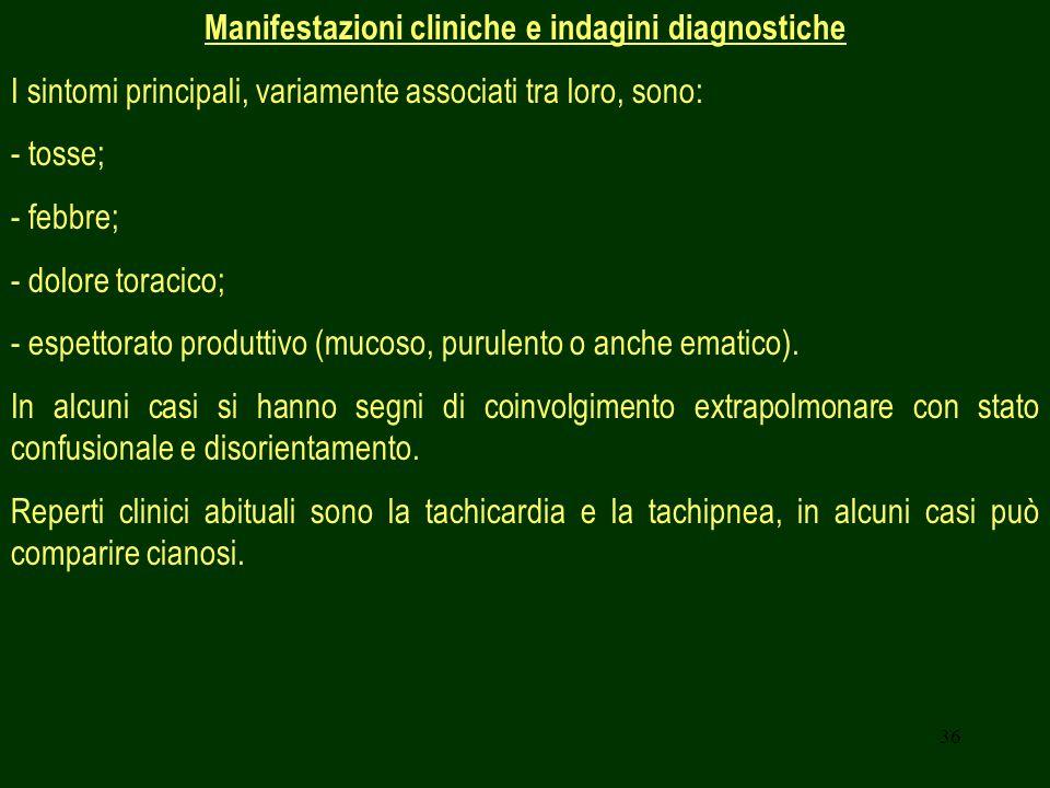36 Manifestazioni cliniche e indagini diagnostiche I sintomi principali, variamente associati tra loro, sono: - tosse; - febbre; - dolore toracico; - espettorato produttivo (mucoso, purulento o anche ematico).