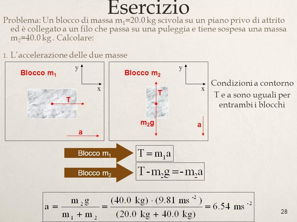28 Esercizio Problema: Un blocco di massa m 1 =20.0 kg scivola su un piano privo di attrito ed è collegato a un filo che passa su una puleggia e tiene