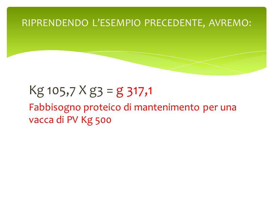 Kg 105,7 X g3 = g 317,1 Fabbisogno proteico di mantenimento per una vacca di PV Kg 500 RIPRENDENDO LESEMPIO PRECEDENTE, AVREMO: