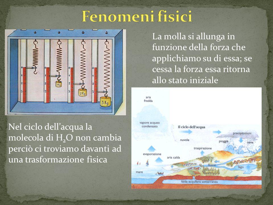 La molla si allunga in funzione della forza che applichiamo su di essa; se cessa la forza essa ritorna allo stato iniziale Nel ciclo dellacqua la mole