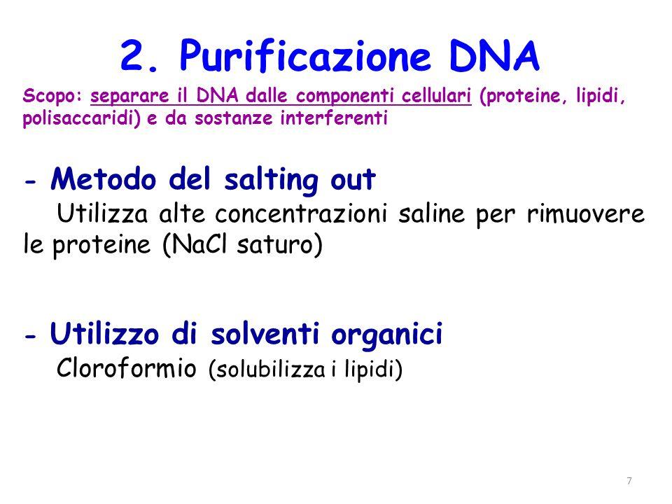 7 2. Purificazione DNA Scopo: separare il DNA dalle componenti cellulari (proteine, lipidi, polisaccaridi) e da sostanze interferenti - Metodo del sal