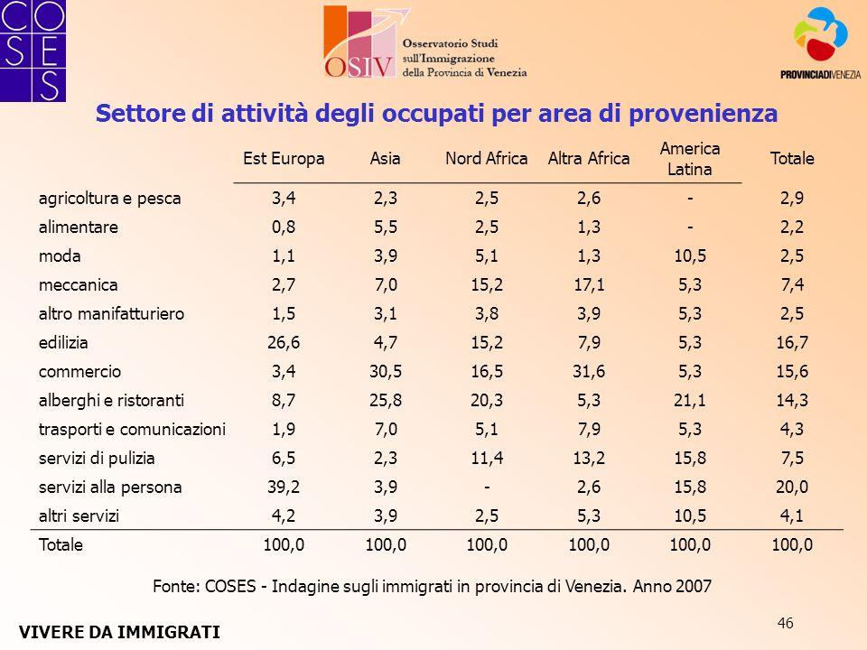 46 Fonte: COSES - Indagine sugli immigrati in provincia di Venezia. Anno 2007 Est EuropaAsiaNord AfricaAltra Africa America Latina Totale agricoltura