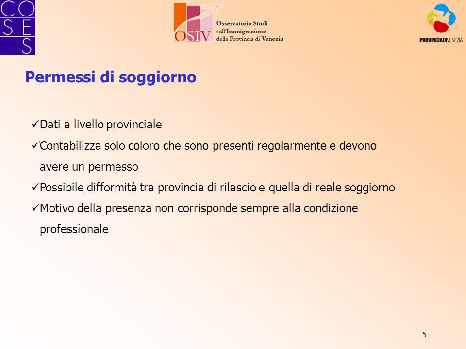 46 Fonte: COSES - Indagine sugli immigrati in provincia di Venezia.