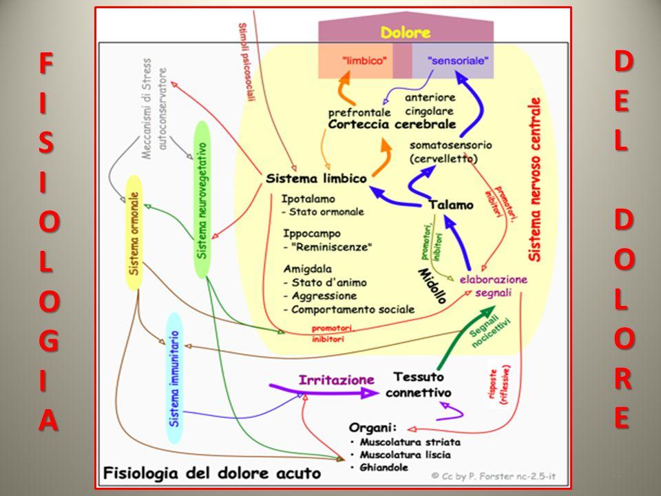 11 FISIOLOGIA DELDOLORE