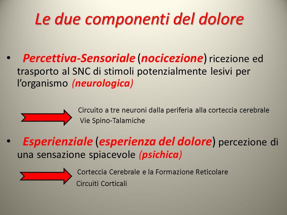 Le due componenti del dolore Percettiva-Sensoriale (nocicezione) ricezione ed trasporto al SNC di stimoli potenzialmente lesivi per lorganismo (neurol