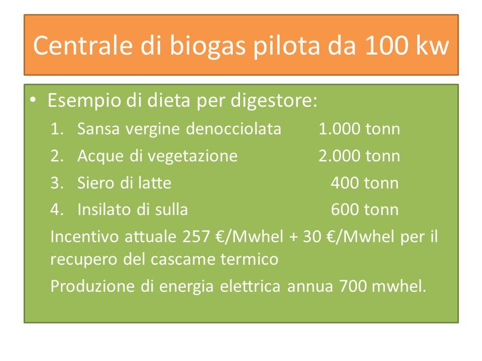 Centrale di biogas pilota da 100 kw Esempio di dieta per digestore: 1.Sansa vergine denocciolata 1.000 tonn 2.Acque di vegetazione 2.000 tonn 3.Siero