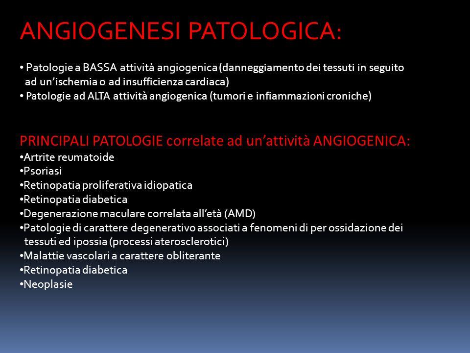 ANGIOGENESI PATOLOGICA: Patologie a BASSA attività angiogenica (danneggiamento dei tessuti in seguito ad unischemia o ad insufficienza cardiaca) Patologie ad ALTA attività angiogenica (tumori e infiammazioni croniche) PRINCIPALI PATOLOGIE correlate ad unattività ANGIOGENICA: Artrite reumatoide Psoriasi Retinopatia proliferativa idiopatica Retinopatia diabetica Degenerazione maculare correlata alletà (AMD) Patologie di carattere degenerativo associati a fenomeni di per ossidazione dei tessuti ed ipossia (processi aterosclerotici) Malattie vascolari a carattere obliterante Retinopatia diabetica Neoplasie