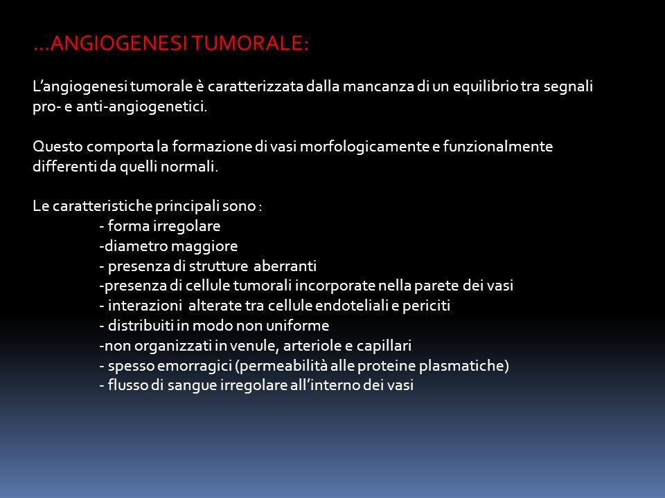 …ANGIOGENESI TUMORALE: Langiogenesi tumorale è caratterizzata dalla mancanza di un equilibrio tra segnali pro- e anti-angiogenetici.