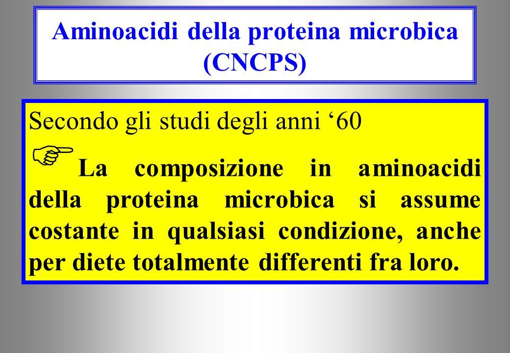 Soltanto il 60% ( 10%) della proteina microbica è disponibile mentre la rimanente è legata alla parete cellulare ed agli acidi nucleici (Ling and Butt
