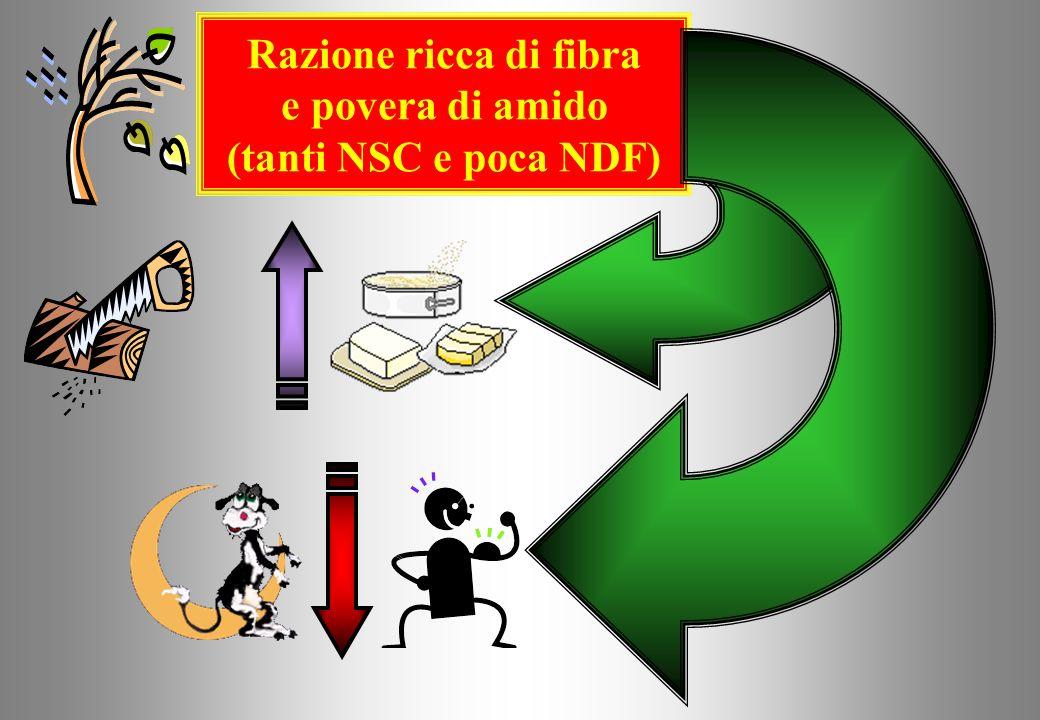 Razione ricca di fibra e povera di amido (tanta NDF e pochi NSC)