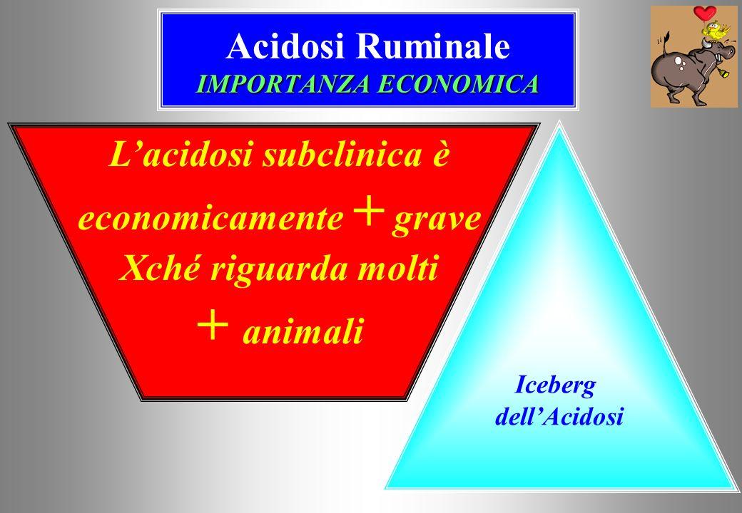 IMPORTANZA ECONOMICA Acidosi Ruminale IMPORTANZA ECONOMICA Iceberg dellAcidosi Lacidosi subclinica è economicamente + grave Xché riguarda molti + animali