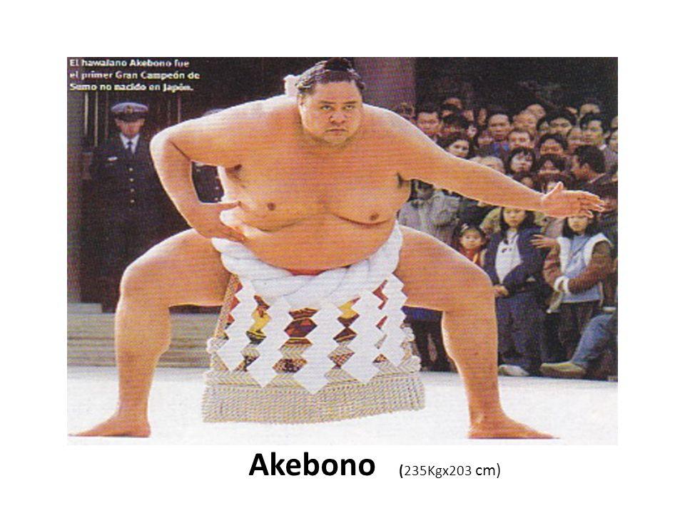 Akebono (235Kgx203 cm)