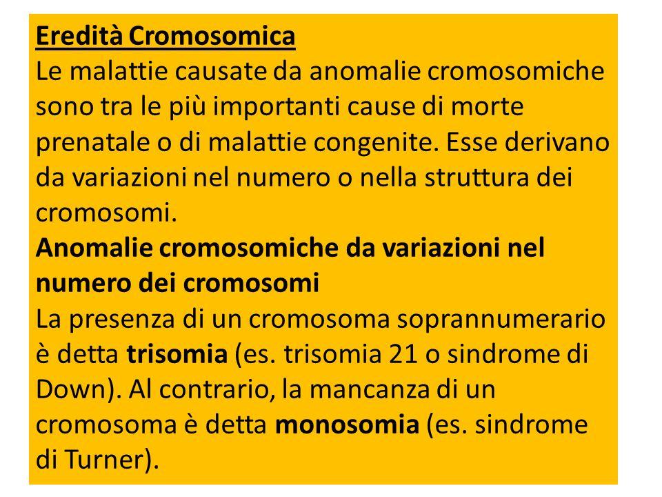 Eredità Cromosomica Le malattie causate da anomalie cromosomiche sono tra le più importanti cause di morte prenatale o di malattie congenite. Esse der