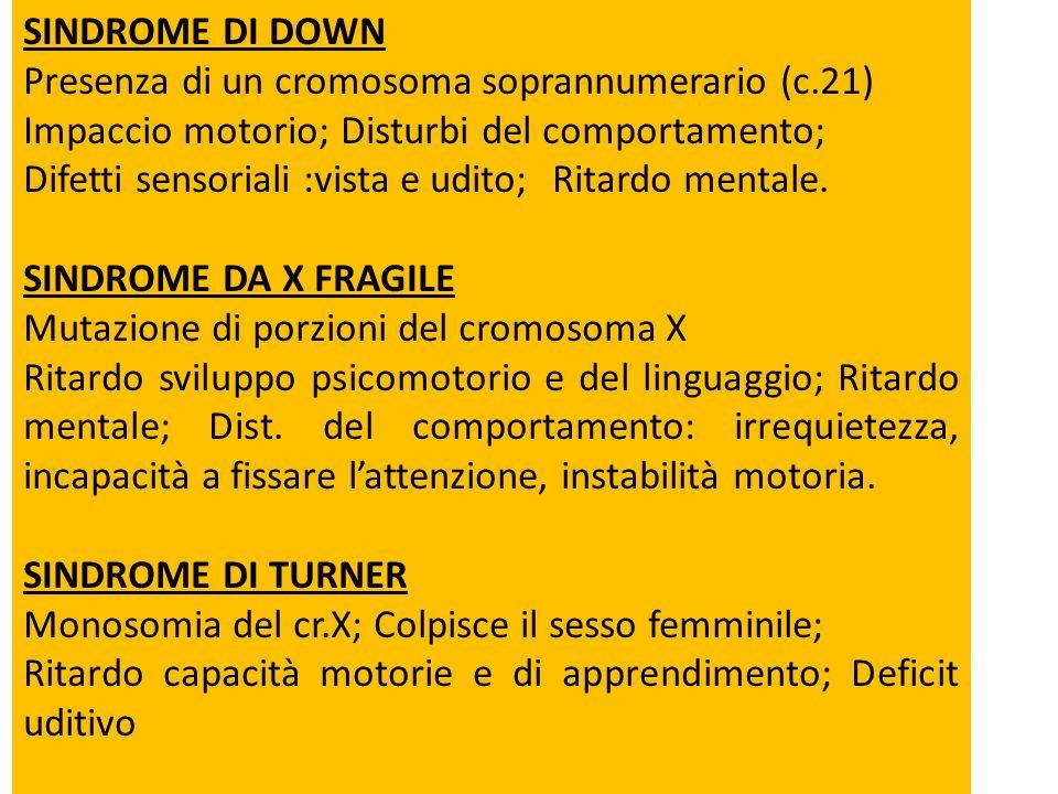 SINDROME DI DOWN Presenza di un cromosoma soprannumerario (c.21) Impaccio motorio;Disturbi del comportamento; Difetti sensoriali :vista e udito;Ritard