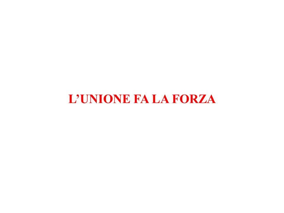 LUNIONE FA LA FORZA