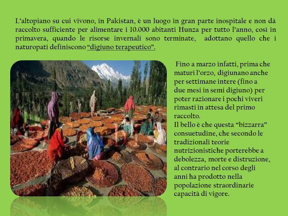 Laltopiano su cui vivono, in Pakistan, è un luogo in gran parte inospitale e non dà raccolto sufficiente per alimentare i 10.000 abitanti Hunza per tu