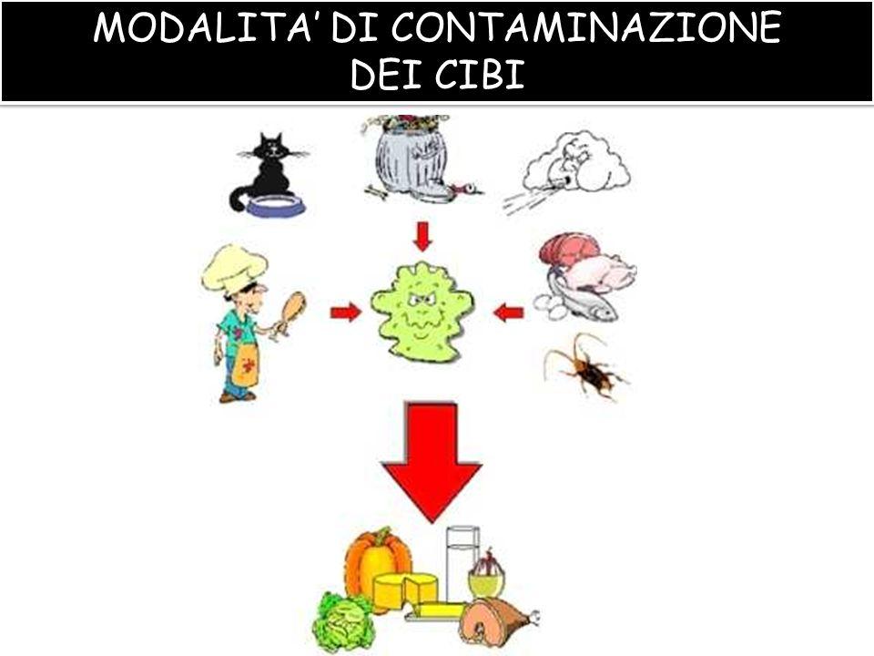 CONTAMINAZIONE DEGLI ALIMENTI CONTAMINAZIONE DEGLI ALIMENTI Più i cibi sono manipolati e costituiti da molti ingredienti, più elevato è il numero di batteri che contengono.