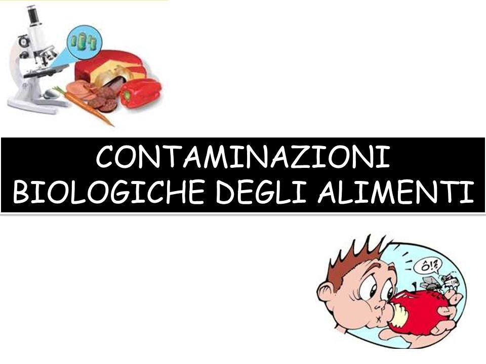 ENDOGENA: allorigine (materie prime) ESOGENA: della lavorazione STOCCAGGIO: Depositi non idonei - Scarsa pulizia delle celle frigo, con promiscuità degli alimenti.