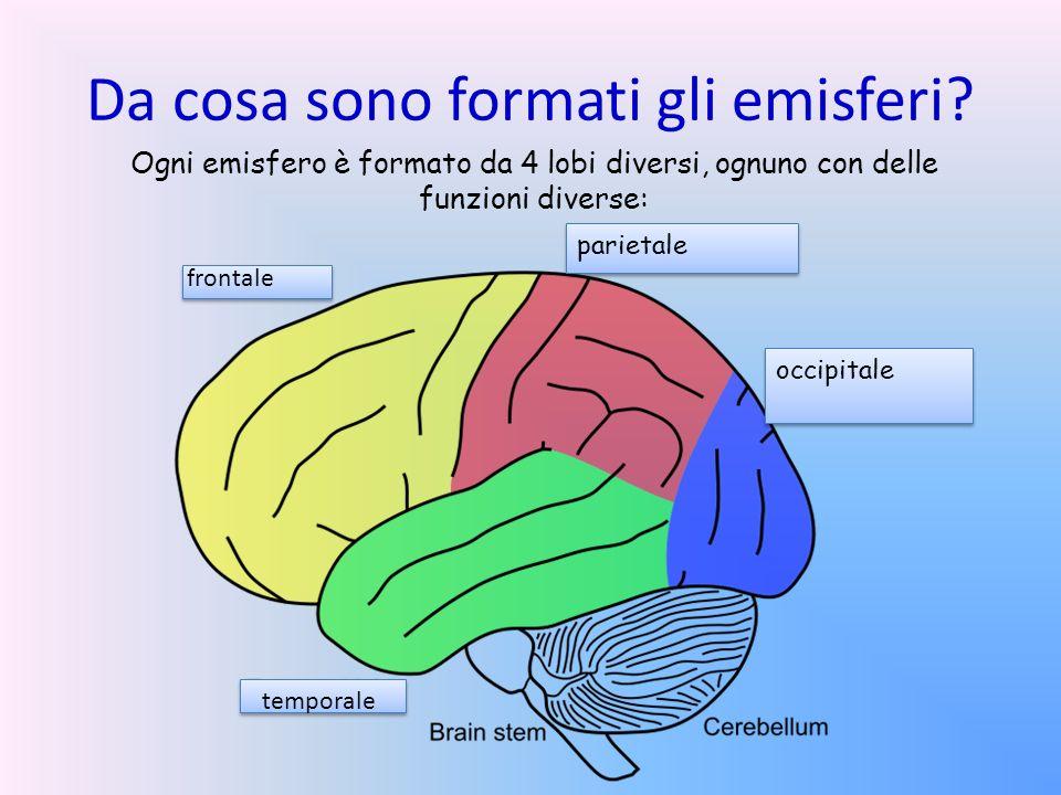 Da cosa sono formati gli emisferi? parietale occipitale frontale temporale Ogni emisfero è formato da 4 lobi diversi, ognuno con delle funzioni divers