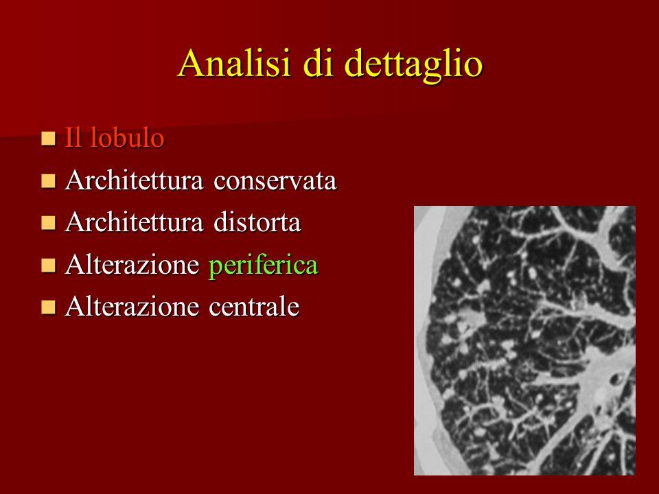 Analisi di dettaglio Il lobulo Il lobulo Architettura conservata Architettura conservata Architettura distorta Architettura distorta Alterazione perif