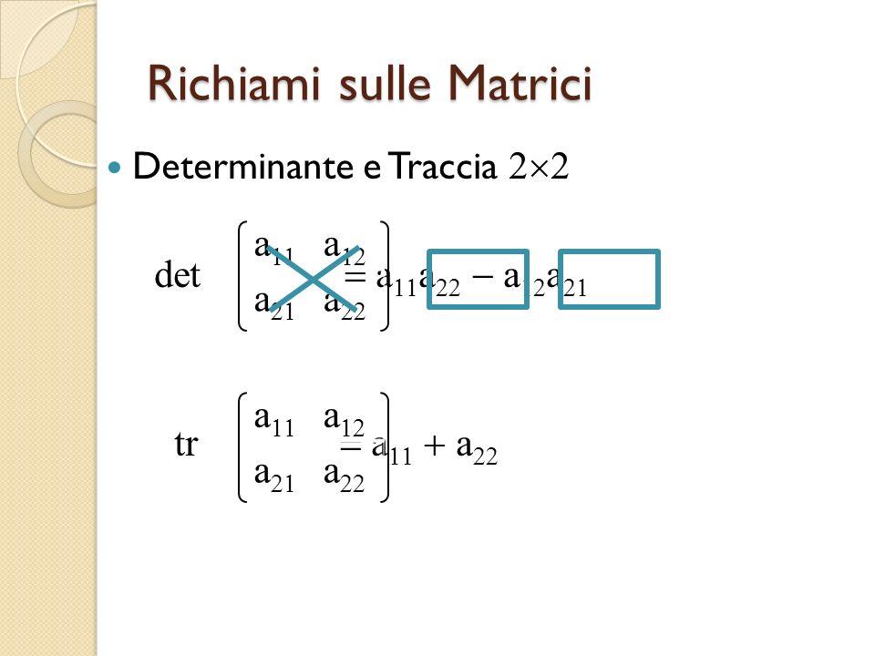 Richiami sulle Matrici Determinante e Traccia det aaaaaa a a a a.tr aaaaaa a a a a a a a a a a