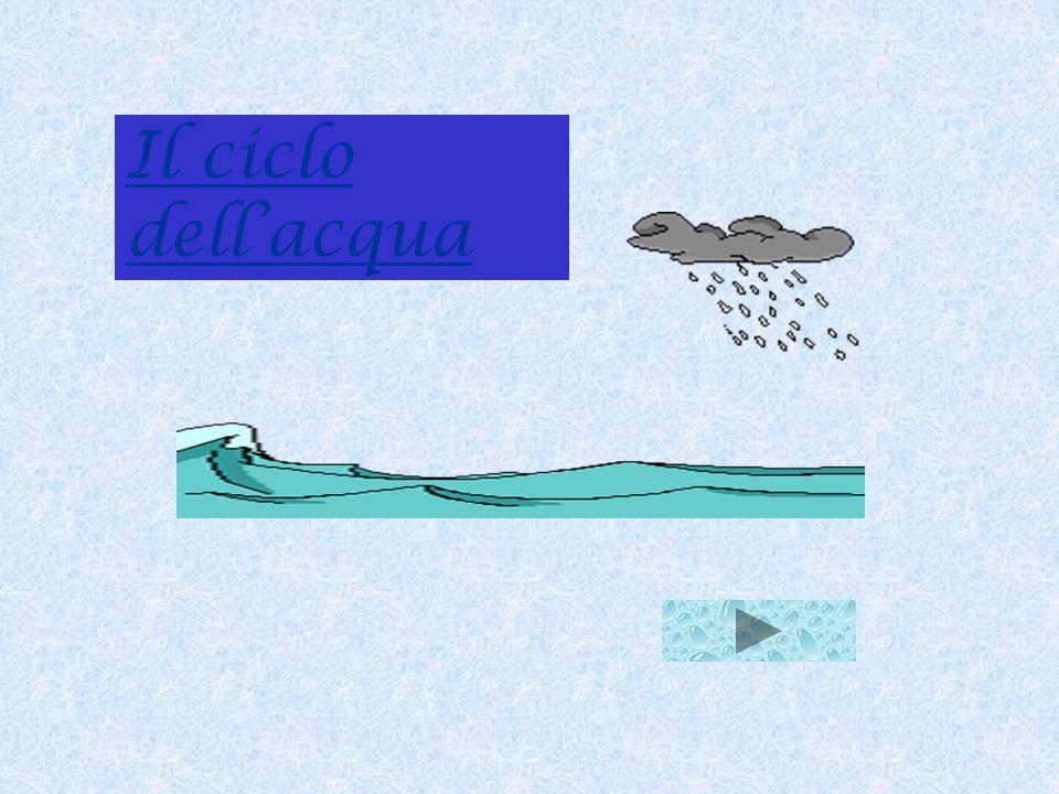 Lacqua della pioggia, lacqua dei fiumi e lacqua del mare non sono la stessa cosa.. Eppure è sempre la stessa acqua!! Tutta lacqua del pianeta partecip