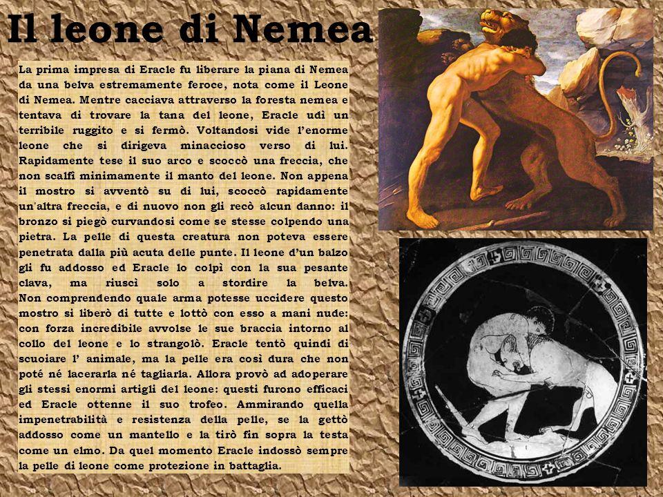 La seconda impresa di Eracle fu l uccisione dellIdra, un mostro dalle tante teste (di cui una immortale) che viveva nella palude di Lerna e atterriva i villaggi vicini divorando uomini e bestie quando si svegliava dal suo sonno.