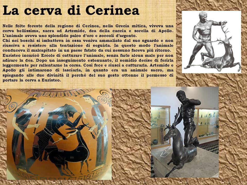 La cerva di Cerinea Nelle folte foreste della regione di Cerinea, nella Grecia mitica, viveva una cerva bellissima, sacra ad Artemide, dea della caccia e sorella di Apollo.